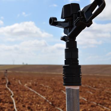 Irrigatore di un impianto irrigazione in campo aperto