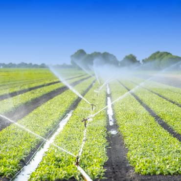 Impianto irrigazione in campo aperto
